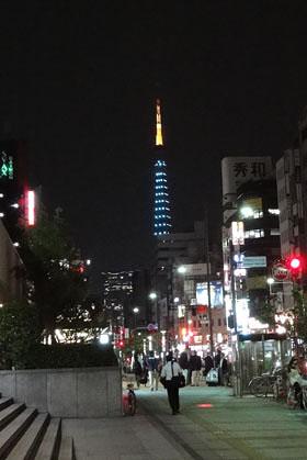 東京タワー(10.05.22)