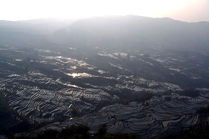 元陽の棚田(中国雲南省)